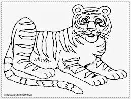 tiger drawing for kids cartoon tiger coloring pages for kids