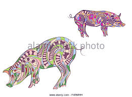 ornamental pigs stock photos ornamental pigs stock images alamy