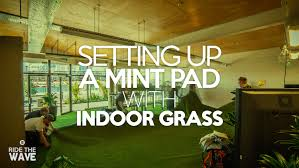 setting up a mint base with indoor grass ride the wave how we