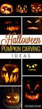 58 best halloween costumes images on pinterest halloween