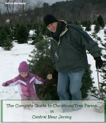 the complete guide to christmas tree farms in central jersey