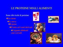 alimentazione ricca di proteine le proteine ppt scaricare