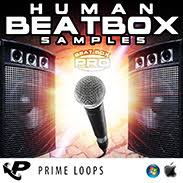 tutorial human beatbox human beatbox sles human beats beatbox loops beatbox sounds
