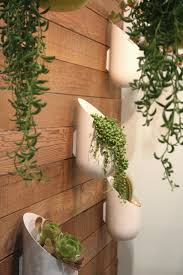 Wall Planters Indoor 116 best small spaces u0026 vertical ideas images on pinterest