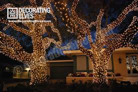 Landscape Tree Lights Ta Tree Lighting Services Decorating Elves