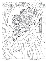 leopard jungle colouring pages 2 coloring 3