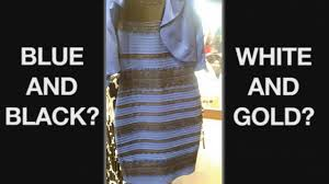 of the dress we asked psychology professors color perception experts to