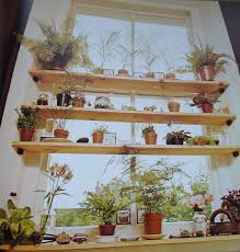 kitchen window shelf ideas shelf like this your kitchen sink keep your plants away from