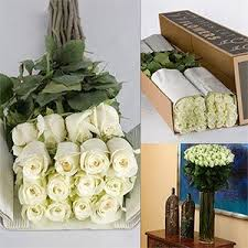 wedding flowers bulk 89 for 100 white roses could order for decorations or