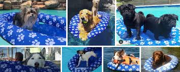 pool floats for dogs swimways