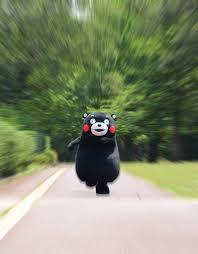 Kumamon Meme - kumamon for the glory of satan bear running toward the camera