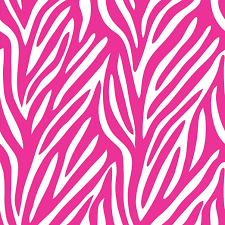 Zebra Bedroom Wallpaper Pink And Black Girls Bedroom Ideas 25 Best Ideas About Pink Zebra