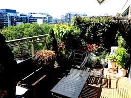 terrace balcony gardening u2014toronto u20142016 historic toronto