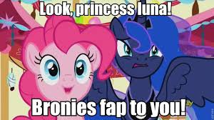 Bronies Meme - 936826 brony do princesses dream of magic sheep image macro