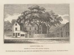 Symbolism Of A Tree by Visiting Boston U0027s Liberty Tree Site Journal Of The American