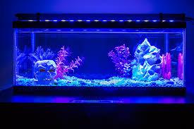 36 high power led aquarium light fixture led aquarium lighting