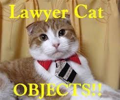 Lawyer Cat Meme - lolcats lawyer cat objects