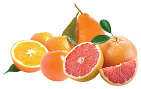 fruit gift ideas florida fruit baskets gift ideas orange ring