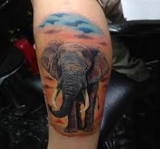 100 elephant tattoo designs for men think big