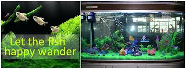 aquarium air decorations ation ations ate s aquarium plants