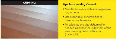 protecting your flooring investment in the and summer