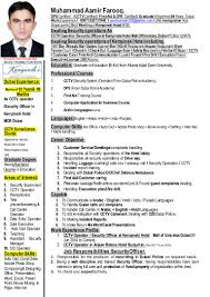 Resume Of Data Entry Operator Muhammad Aamir U0027s Cv Latest Updated