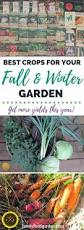 winter gardening archives gardening