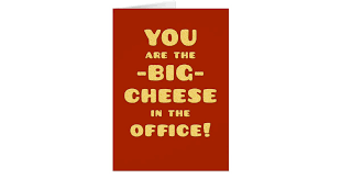congratulations promotion card you are the big cheese congratulations promotion card zazzle