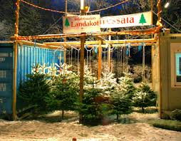 an icelandic christmas christmas tree lots christmas tree and