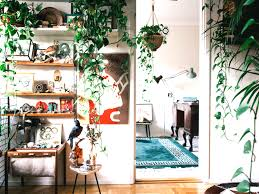 style it like you stole it wide living room plant display