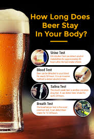 how long does beer stay in your system for urine test