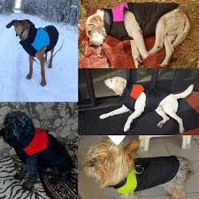 aliexpress com buy dog clothes for small dogs winter puppy