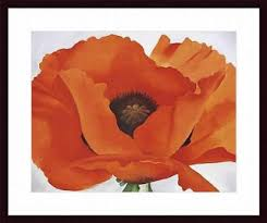 Poppy Home Decor Home Decor Trend How To Decorate With Poppy