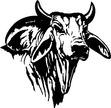 bull logo cliparts free download clip art free clip art on