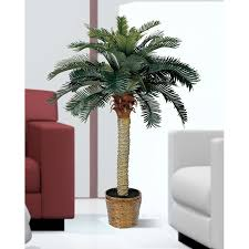 amazon com nearly natural 5043 sago silk palm tree 4 feet green