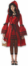 wizard of oz costumes spirit halloween 25 best halloween costumes for maddie images on pinterest