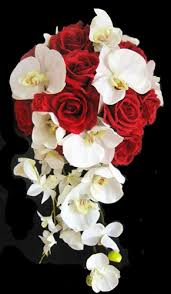 Red Orchids Roses And Off White Orchids Cascading Bouquet