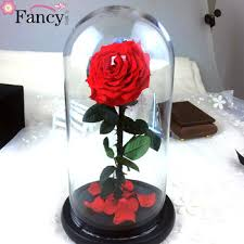glass roses new design quality preserved roses big size in glass