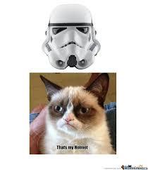 Star Wars Cat Meme - grumpy cat meme star wars ma