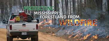 Wildfire Website Design mississippi forestry commission