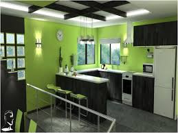 olive green kitchen accessories lovely lime green kitchen
