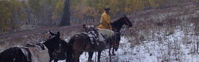 colorado semi guided elk hunts northwestern colorado outfitters hunting u0026 fishing trips