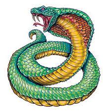 king cobra tattooforaweek temporary tattoos largest temporary