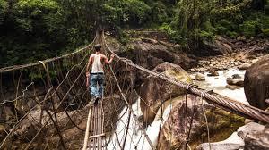 living bridges india the best bridge 2017
