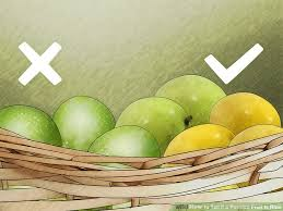 Judge A Tree By Its Fruit - 3 ways to tell if a passion fruit is ripe wikihow