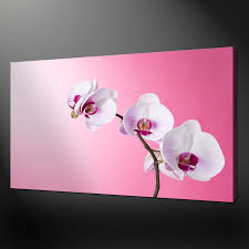 canvas print pictures high quality handmade free next day delivery purple orchids quality premium canvas print picture wall
