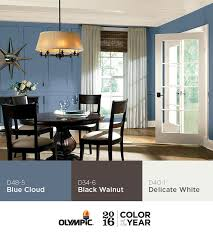 27 best olympic 2016 paint color of the year blue cloud images on