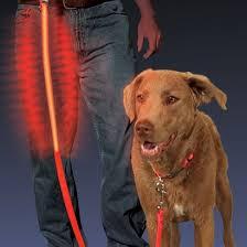 Light Up Dog Collar Light Up Dog Lead