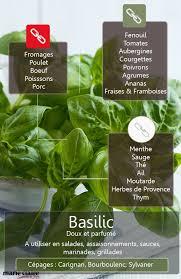 herbe cuisine comment utiliser le basilic en cuisine le basilic basilic et
