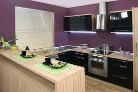 cuisine couleur bois peinture couleur bois cuisine prune plan travail en peinture couleur
